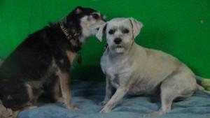 Grady and Olivia (3)